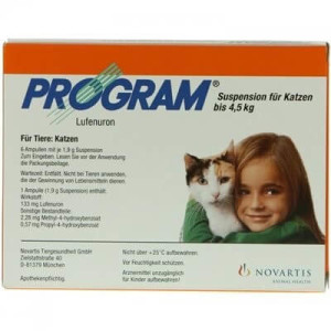 Program Katze