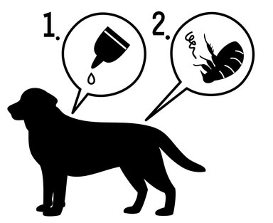 Spot on Hund Pictogram